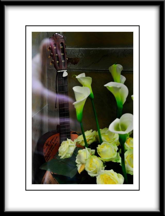 La Tomba del famoso cantautore Fabrizio de Andre' e la sua chitarra. - The Tomb of the famous singer-songwriter Fabrizio De Andre' and his guitar.