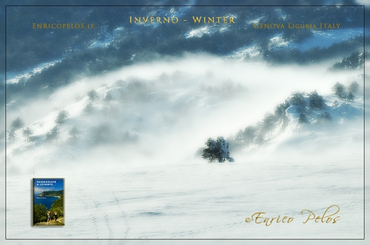 LE 4 STAGIONI: AUTUNNO: INVERNO  - THE 4 SEASONS: WINTER