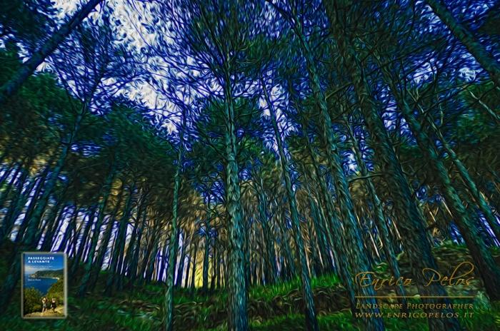 Passeggiate a Levante TREES - ALBERI