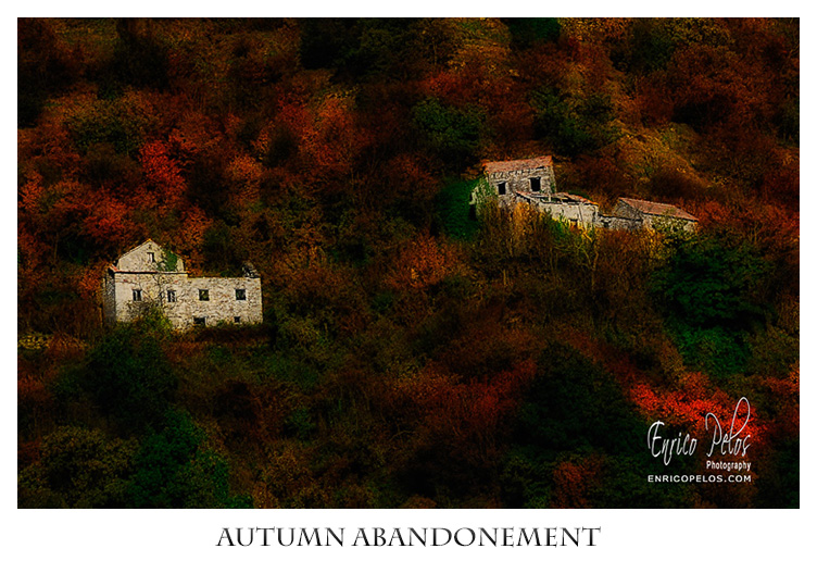 AUTUMN ABANDONEMENT