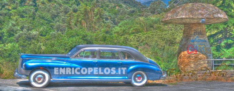 vintage car with mushroom - ph enrico pelos