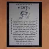 Una scelta di 45 itinerari, (corredati di 283 Fotografie e 45 Cartine) tra i molti che ho percorso nella Liguria di Levante e che vanno dalle semplici passeggiate a escursioni più impegnative, per tutte le stagioni. Molti sono percorsi conosciuti e famosi ma sempre belli da scoprire: Golfo Paradiso, Portofino, Antola, Val d'Aveto, Baia delle Favole, Cinque Terre, Golfo dei Poeti etc. nomi evocativi che meritano di essere conosciuti ed esplorati ma senza fretta, tra il verde dei boschi e l'azzurro del mare e dei laghi e il libro conduce in un viaggio a passo d'uomo alla scoperta del territorio, della natura e del paesaggio. Altri possono essere una scoperta come la cava della Valle Lagorara o l'intero complesso delle fortificazioni di Genova o l'itinerario particolare nel Cimitero Monumentale di Staglieno. Il libro, corredato da molte fotografie, cartine, note tecniche, è pensato per chi vuole andare alla scoperta di un paesaggio di particolare bellezza tra mare e monti, itinerari tra rinomate spiagge o su promontori che offrono squarci su scogliere o che si inoltrano nell'entroterra in zone rurali e montane attraversate da vie del sale e antiche mulattiere. Box di approfondimento si soffermano su aspetti storici, naturalistici e artistici senza dimenticare il folklore e le tradizioni gastronomiche. - 45 itineraries (with 283 photos and 47 maps) among the many I have done in Eastern Liguria which varies from easily walking paths to more demanding hiking and trekkings. The book is fully illustrated with photos and enriched with reference maps and it is thought either for the tourist and the excursion traveller and trekker who wants to discover a landscape of beauty. The book accompanies the reader/walker not only to renowed beaches landscapes like 5 Terre but also to inland mount paths like in Antola, Aveto, Trebbia valleys, etc. or particular sites like Jasper Lagorara Valley, the Genoa ancient fortresses or the Staglieno Monumental Cemetery. Detailed boxes illus